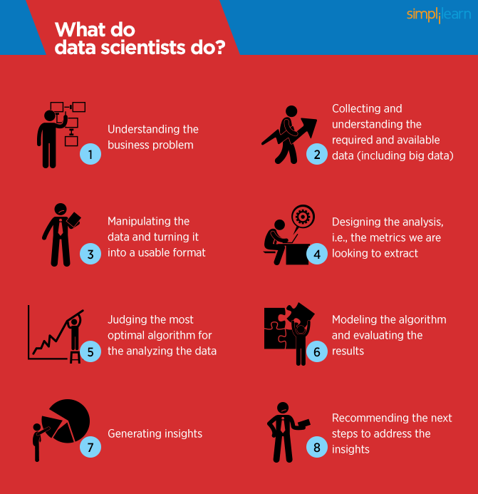 what data scientists do