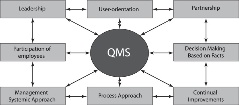 quality management process